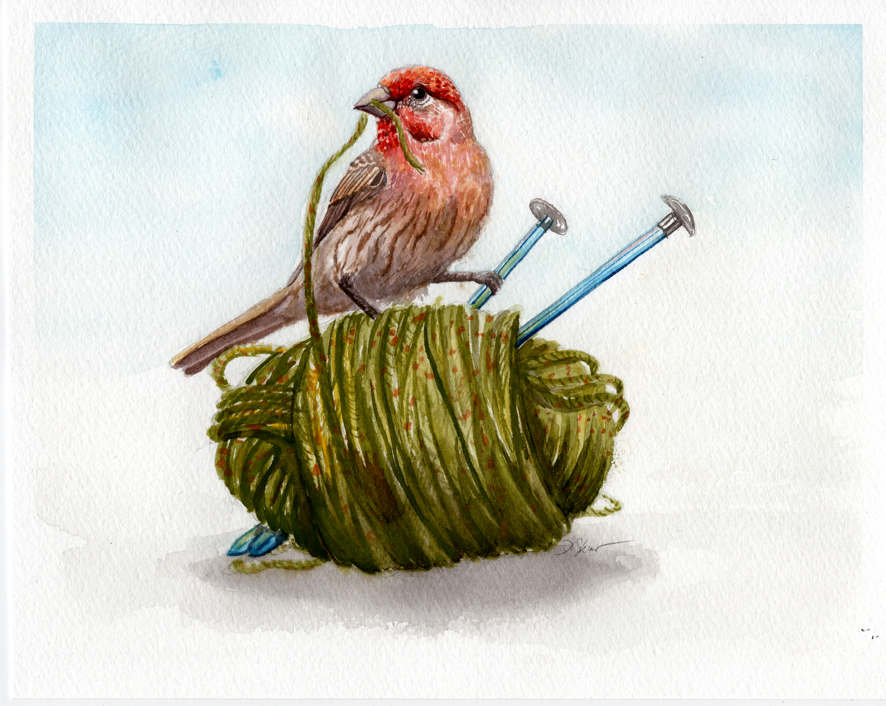 Yarn-Finch